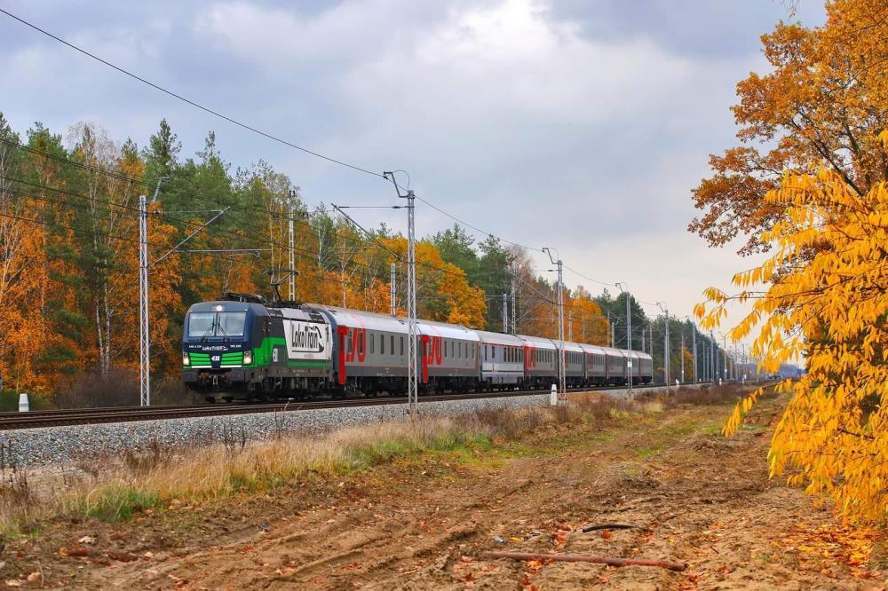Jesienna fotografia